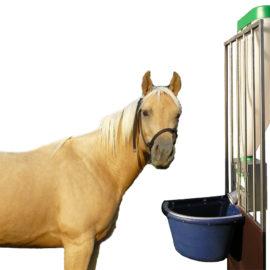 Alimentazione automatica per cavalli