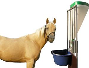 Dosatore Con Cavallo